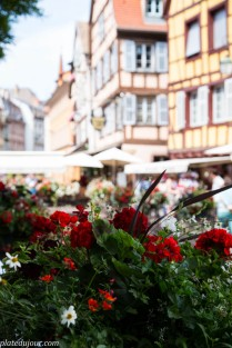 Here & There-Alsace, part 1- The Land of Wine and Flowers