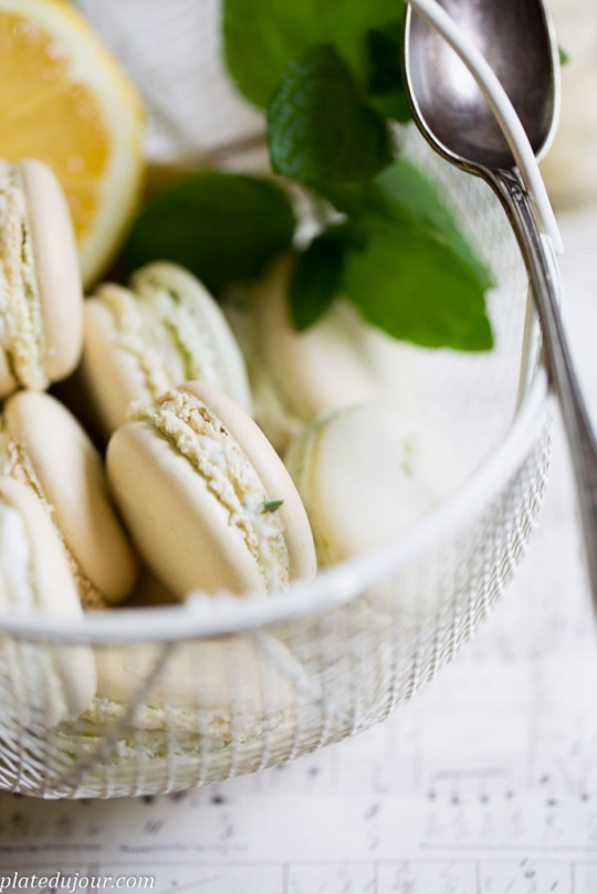 French macarons 2